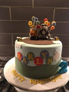 Up balloon cake - character cakes - any design - cake maker - berwick upon tweed